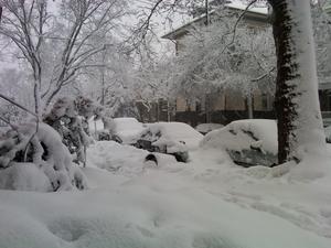 victoria.snow.JPG